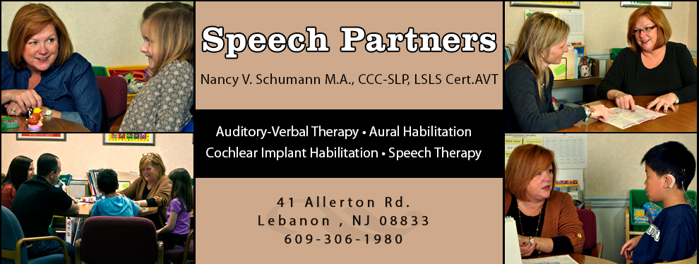 New Jersey Auditory-Verbal Therapist • Speech Language Pathologist • Hunterdon County